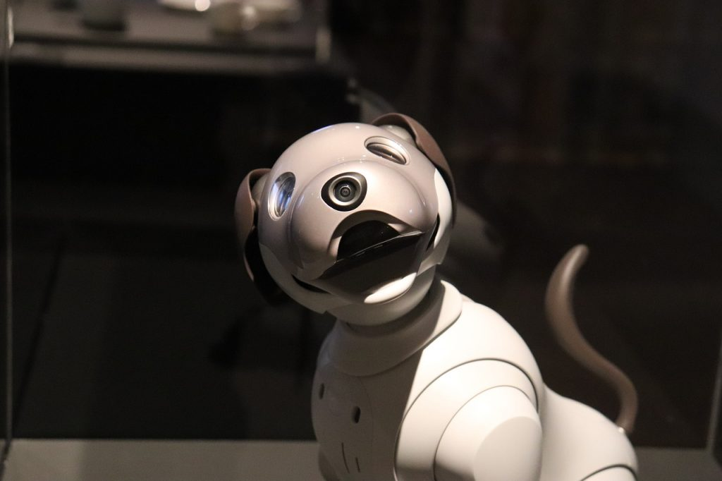 robotic pet therapy