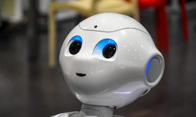 Elder Care Robots to Care For The Elderly Image